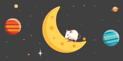 mouse eating moon image